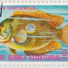 Sellos: 1975 - GUINEA ECUATORIAL - PECES EXOTICOS - EUTROPUS MACULATUS. Lote 98792447