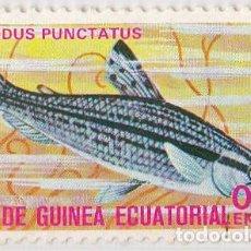 Sellos: 1975 - GUINEA ECUATORIAL - PECES EXOTICOS - CHILODUS PUNCTATUS. Lote 98792727