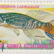 Sellos: 1975 - GUINEA ECUATORIAL - PECES EXOTICOS - APHYOSEMION CAERULEUM. Lote 98793247