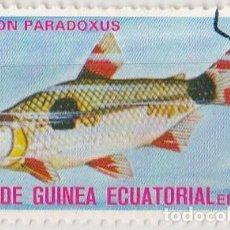 Sellos: 1975 - GUINEA ECUATORIAL - PECES EXOTICOS - EXODON PARADOXUS. Lote 98793703