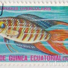 Sellos: 1975 - GUINEA ECUATORIAL - PECES EXOTICOS - MACROPODUS OPERCULARIS. Lote 98793811