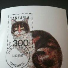 Sellos: HB DE TANZANIA MATASELLADA. 1992. GATO EUROPEO. ANIMALES. FAUNA. NATURALEZA. DOMESTICOS. FELINO.. Lote 104138375