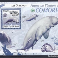 Sellos: COMORES 2009 HB IVERT 193 *** FAUNA MARINA DE COMORES - EL DUGONG. Lote 113692787
