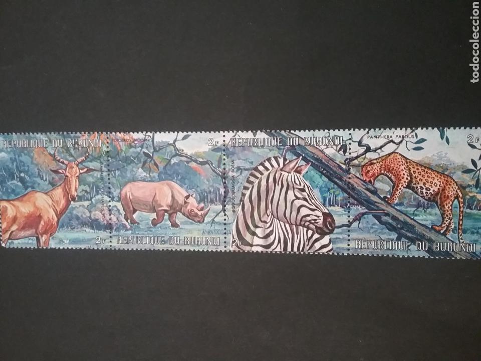 SELLOS R. DE BURUNDI MATASELLADOS. 1971. ANIMALES AFRICANOS. ANTILOPE. CEBRE. PANTERA. RINOCERONTE. (Sellos - Temáticas - Fauna)