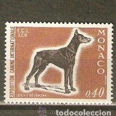 Sellos: MONACO 1970 IVERT 816 *** EXPOSICIÓN CANINA INTERNACIONAL MONTECARLO - PERROS - FAUNA - DOBERMAN. Lote 122117771