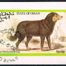 Briefmarken - Oman, perro de Terranova, Hoja Bloque sin dentar, usada - 123253047