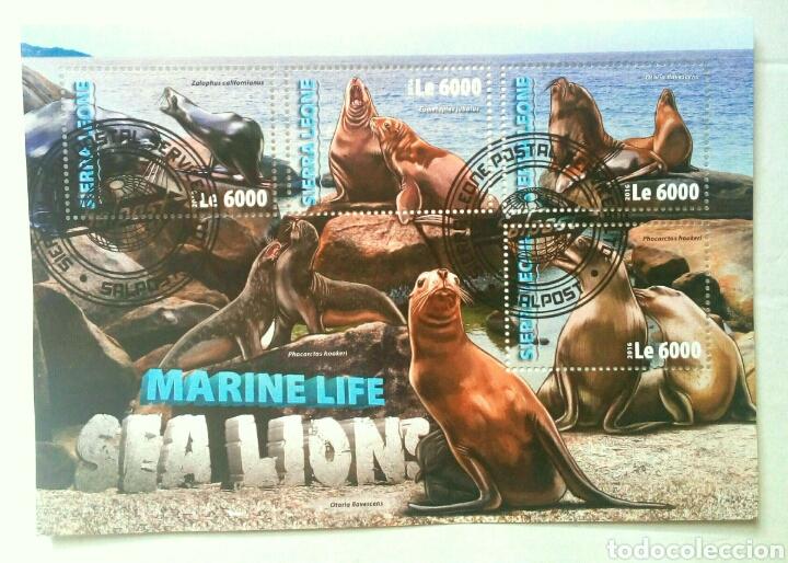LEONES MARINOS HOJA BLOQUE DE SELLOS USADOS RECIENTES DE SIERRA LEONA (Sellos - Temáticas - Fauna)