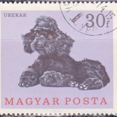 Sellos: 1967 - HUNGRIA - PERROS - CANICHE - YVERT 1903. Lote 134069730