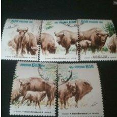 Sellos: SELLOS DE POLONIA (POLSKA) MTDOS.1981/BISONTE/PROTECCION NATURALEZA/ANIMALES/UNGULADOS/MAMIFERO/FAUN. Lote 134133466