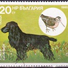 Timbres: 1985 - BULGARIA - PERROS DE CAZA Y SUS PRESAS - FIELD SPANIEL / AVE - YVERT 2978. Lote 134986906