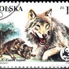 Francobolli: 1985 - POLONIA - PROTECCION DE LA NATURALEZA WWF - LOBO - YVERT 2789. Lote 143320722