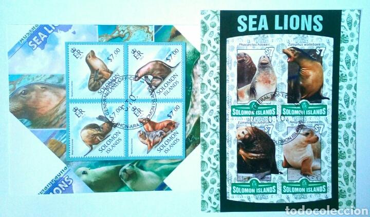 LEONES MARINOS 2 HOJAS BLOQUE DE SELLOS USADOS RECIENTES DE ISLAS SALOMÓN (Sellos - Temáticas - Fauna)