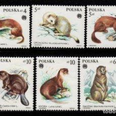 Sellos: POLONIA 2758/63** - AÑO 1984 - FAUNA - ANIMALES SALVAJES. Lote 146899978