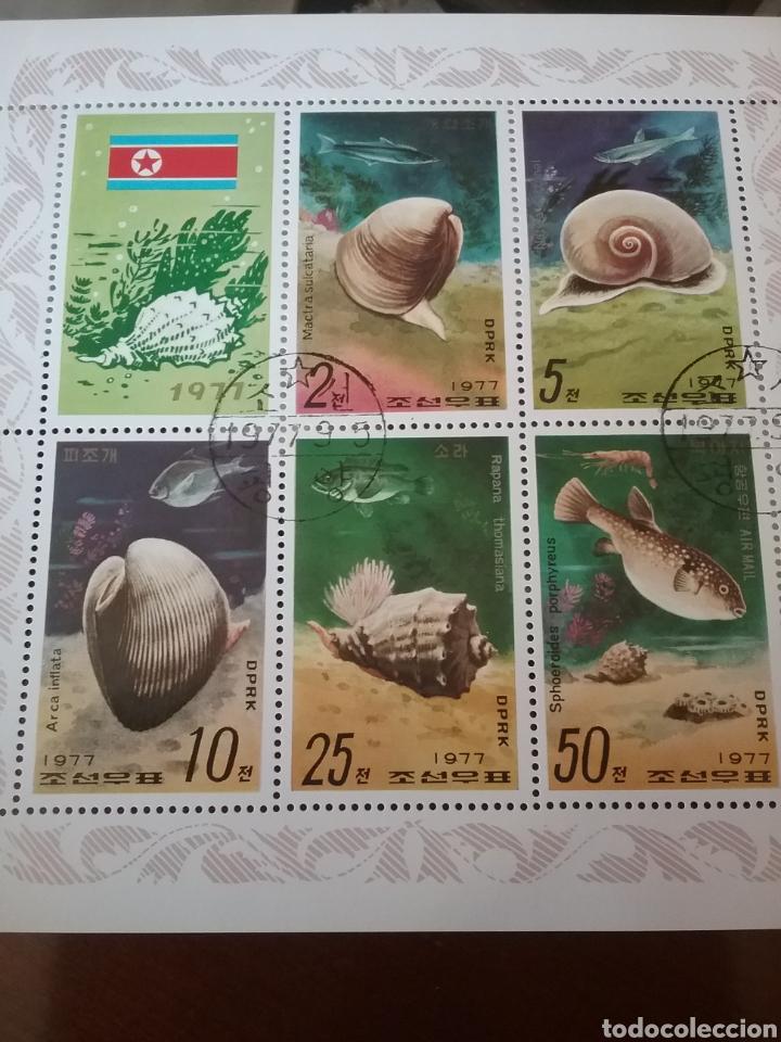 HB COREA NORTE MTDA (DPKR)/1977/FAUNA, VIDA MARINA/CONCJAS/PESCADO/PECES/ARRECIFE/CAMARON (Briefmarken - Thematische - Fauna)