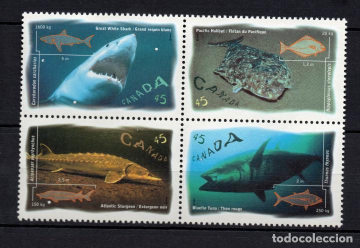 CANADA 1511/14** - AÑO 1997 - FAUNA MARINA - PECES (Sellos - Temáticas - Fauna)