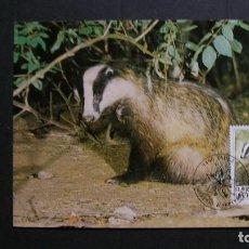 Sellos: LIECHTENSTEIN-1993-CARTA MAXIMA-60R.. Y&T 1007-FAUNA-ANIMALES DE CAZA. Lote 151606022