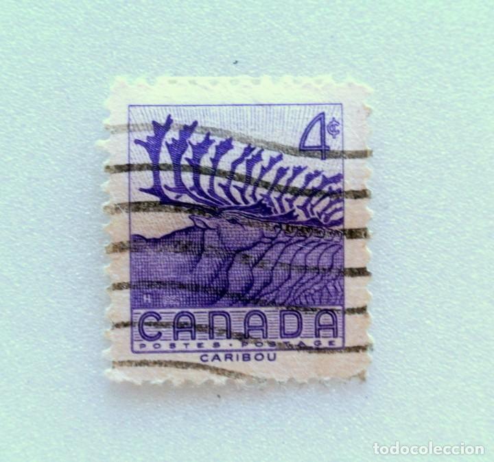 SELLO POSTAL CANADA 1956, 4 CENTS , CARIBOU, CONMEMORATIVO, USADO (Sellos - Temáticas - Fauna)