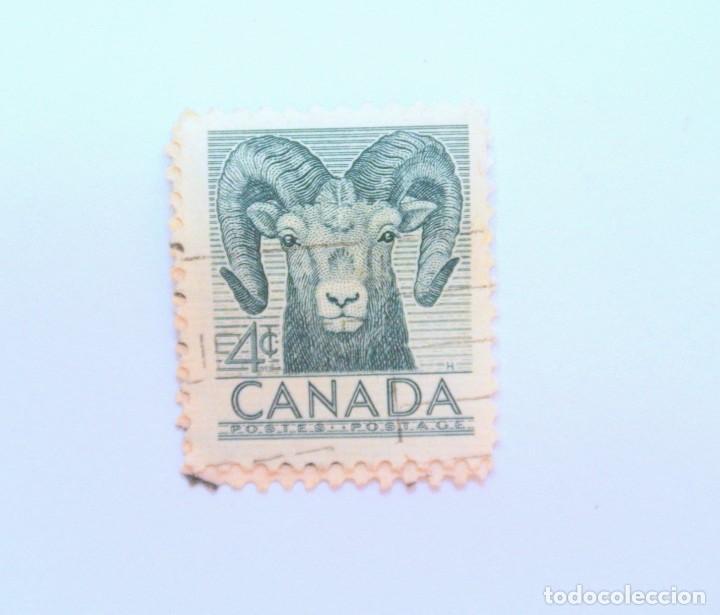 SELLO POSTAL CANADA 1953, 4 CENTS , BORREGO CIMARRON ,CONMEMORATIVO, USADO (Sellos - Temáticas - Fauna)