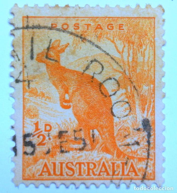 SELLO POSTAL AUSTRALIA 1949, 1/2 D, CANGURO ROJO, USADO (Sellos - Temáticas - Fauna)