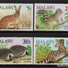 Sellos: MALAWI 428/31** - AÑO 1984 - FAUNA - ANIMALES SALVAJES - PEQUEÑOS MAMIFEROS. Lote 156512238