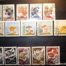 Sellos: LOTE 15 SELLOS FLORA - RUSIA - URSS - PLANTAS - HONGOS, SETAS, FLORES - AÑOS 60 - MONTADOS EN FICHA. Lote 156679678