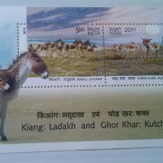 Sellos - India burros autóctonos hoja bloque de sellos nuevos - 167977188
