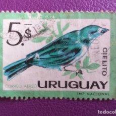 Sellos: SELLO DE URUGUAY. FAUNA. PÁJARO, CIELITO.. Lote 179284145