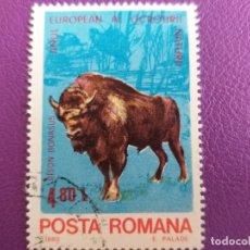 Sellos: SELLO DE RUMANIA. AÑO 1980. FAUNA. BISON BONASUS.. Lote 179308717