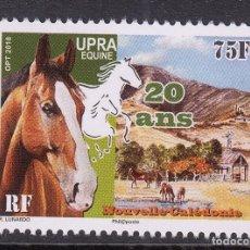 Sellos: NUEVA CALEDONIA 2018 CABALLOS 20 ANIVERSARIO DE UPRA. Lote 183427207