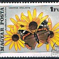 Sellos: HUNGRIA Nº 3430, MARIPOSA: ALMIRANTE ROJO Y LA FLOR DEL NARANJO, USADO. Lote 187525086