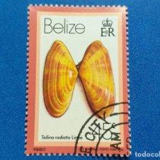 Sellos: SELLO DE BELIZE. FAUNA. TELLINA RADIATA. CONCHA. AÑO 1980. USADO.. Lote 190937073