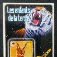 Selos: FAUNA FELINOS HOJA BLOQUE DE SELLOS NUEVOS DE REPÚBLICA CENTROAFRICANA. Lote 191822965