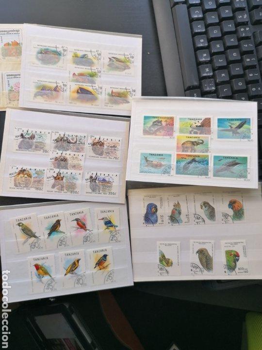 Sellos: Lote fauna series en usado - Foto 3 - 196603712