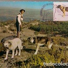 Sellos: PORTUGAL & MAXI, SERRA DA ESTRELA, PERRO DE RAZA PORTUGUESA, SALÓN DE NUMISMÁTICA 1982 (407) . Lote 198632558