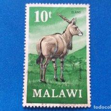 Sellos: SELLO DE MALAWI. YVERT 152. FAUNA. NATURALEZA. ELAND.. Lote 199036562