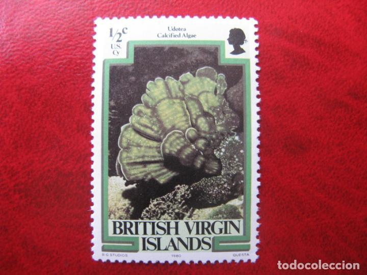ISLAS VIRGENES 1979, FAUNA MARINA, YVERT 371 (Sellos - Temáticas - Fauna)
