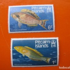 Timbres: PITCAIRN 1984, FAUNA, PECES. Lote 201956153