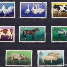 Sellos: POLONIA - SERIE 8 SELLOS DE ANIMALES DE LA CASA DE LABRANZA - VALIDE, PERO CON ADHESIVO - NUEVOS. Lote 203810332