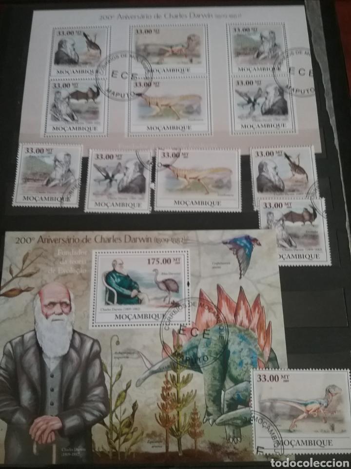 HB 2 +SELLOS MOZAMBIQUE MTDA/2009/200 ANIV/DARWIN/EVOLUCION/ANIMALES/PREHISTORIA/DINOSAURIOS/AVES/F (Sellos - Temáticas - Fauna)