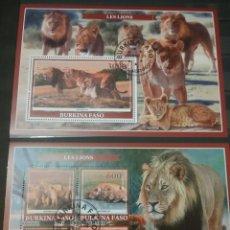 Sellos: HB (2) BURKINA FASO MTDA/2019/LEONES/TIGRE/FELINO/MAMIFERO/NATURALEZA/FAUNA/ANIMALES/SABANA/DEPREDAD. Lote 206281611
