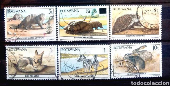 FAUNA SALVAJE SERIE DE SELLOS USADOS DE BOSTWANA (Sellos - Temáticas - Fauna)
