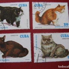 Timbres: +CUBA 1994, TEMA FAUNA, GATOS. Lote 210280931