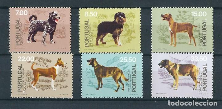PORTUGAL 1981 PERROS DE RAZA PORTUGUESA (Sellos - Temáticas - Fauna)