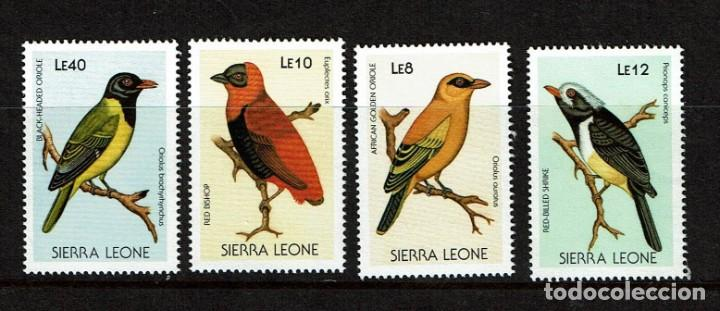 SERIE PÁJAROS. SIERRA LEONA. NUEVO (Sellos - Temáticas - Fauna)