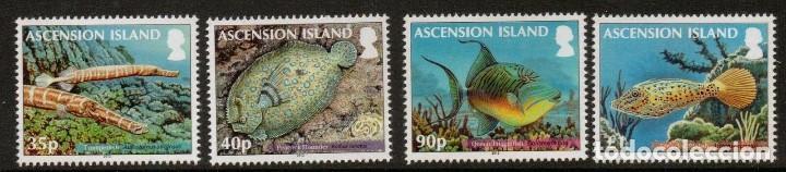 SELLOS ASCENSION ISLAND 2012 AVES PECES DE ARRECIFE (Sellos - Temáticas - Fauna)
