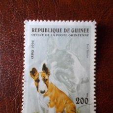 Sellos: REPUBLICA DE GUINEA SELLO USADO PERRO 1996. Lote 215308000