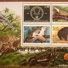 Sellos: HOJA SRI LANKA CON 4 SELLOS DEL AÑO 1994: ANIMALES SALVAJES, WILD LIFE OF SRI LANKA.. Lote 217055971