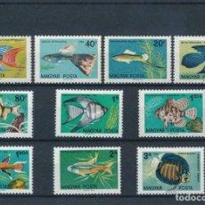 Sellos: HUNGRIA 1962 IVERT 1495/504 *** FAUNA - PECES DE ACUARIO. Lote 219883010