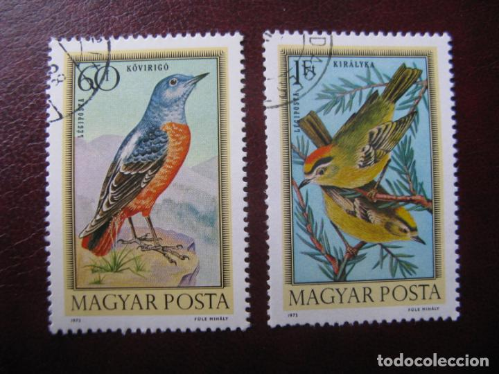 +HUNGRIA, 1973, TEMA FAUNA, PAJAROS (Sellos - Temáticas - Fauna)
