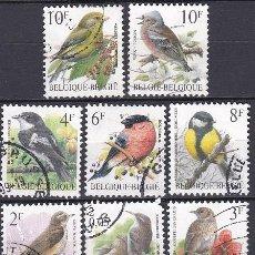 Timbres: LOTE DE SELLOS - BELGICA - FAUNA - ANIMALES - AVES - PAJAROS (AHORRA EN PORTES, COMPRA MAS). Lote 222331062